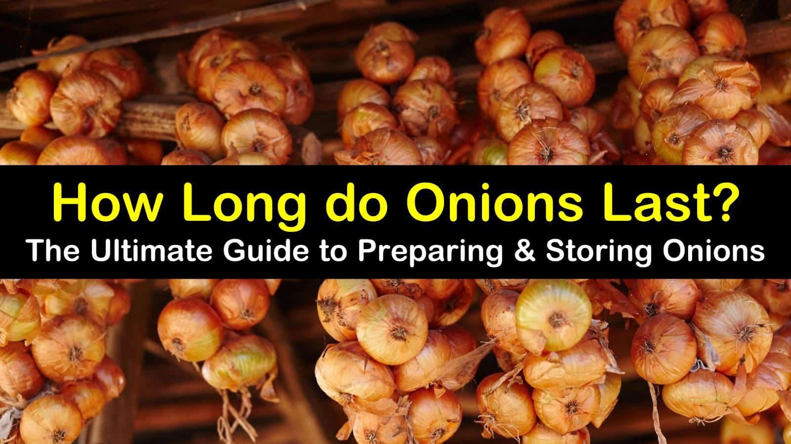 how long do onions last titleimg1