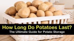 how long do potatoes last titleimg1