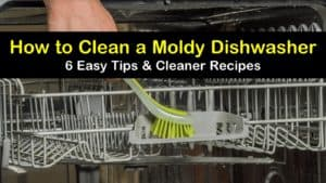 how to clean a moldy dishwasher titleimg1