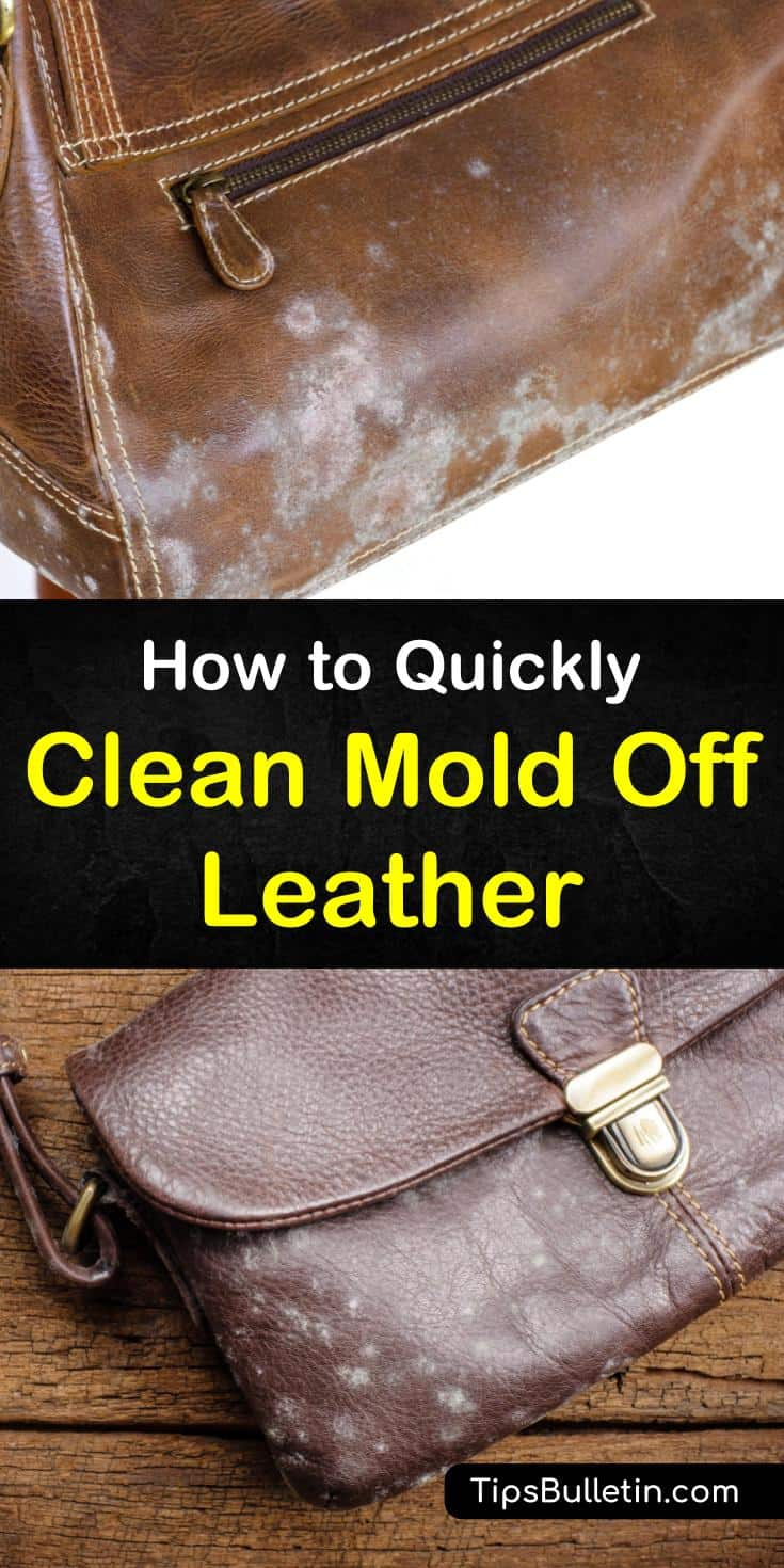 Want to know how to clean mold off leather boots, a purse, or a couch? No matter what leather goods you need to remove mold from, these cleaning solutions will work for you. Try a gentle cleaner like saddle soap for unfinished leather and vinegar for spot treatments. #clean #mold #off #leather