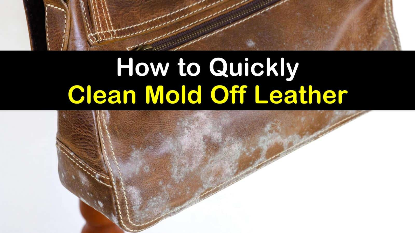 how to clean mold off leather titleimg1