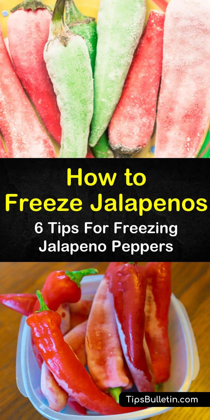 Discover how to freeze jalapenos using flash freezing strategies. Find answers to questions like, can you freeze peppers without blanching them? Try these 6 easy tips to get your jalapeno peppers ready from prep work to the freezer to a tasty recipe finish. #freeze #jalapenos #peppers #howto