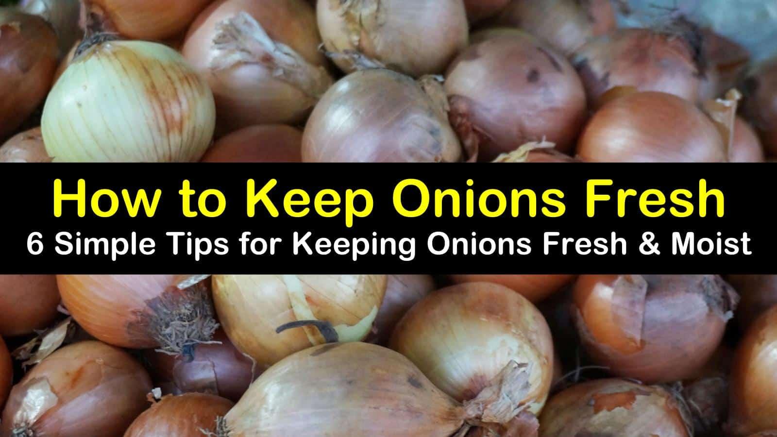 how to keep onions fresh titleimg1