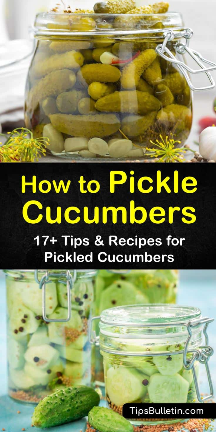 Discover the best strategies for how to pickle cucumbers. Choose from spicy or sweet recipes, as well as how to make the classic dill flavor. Follow these amazing tips for pickling cucumbers with vinegar and preserving them even longer by canning. #pickle #cucumbers #dill #pickled