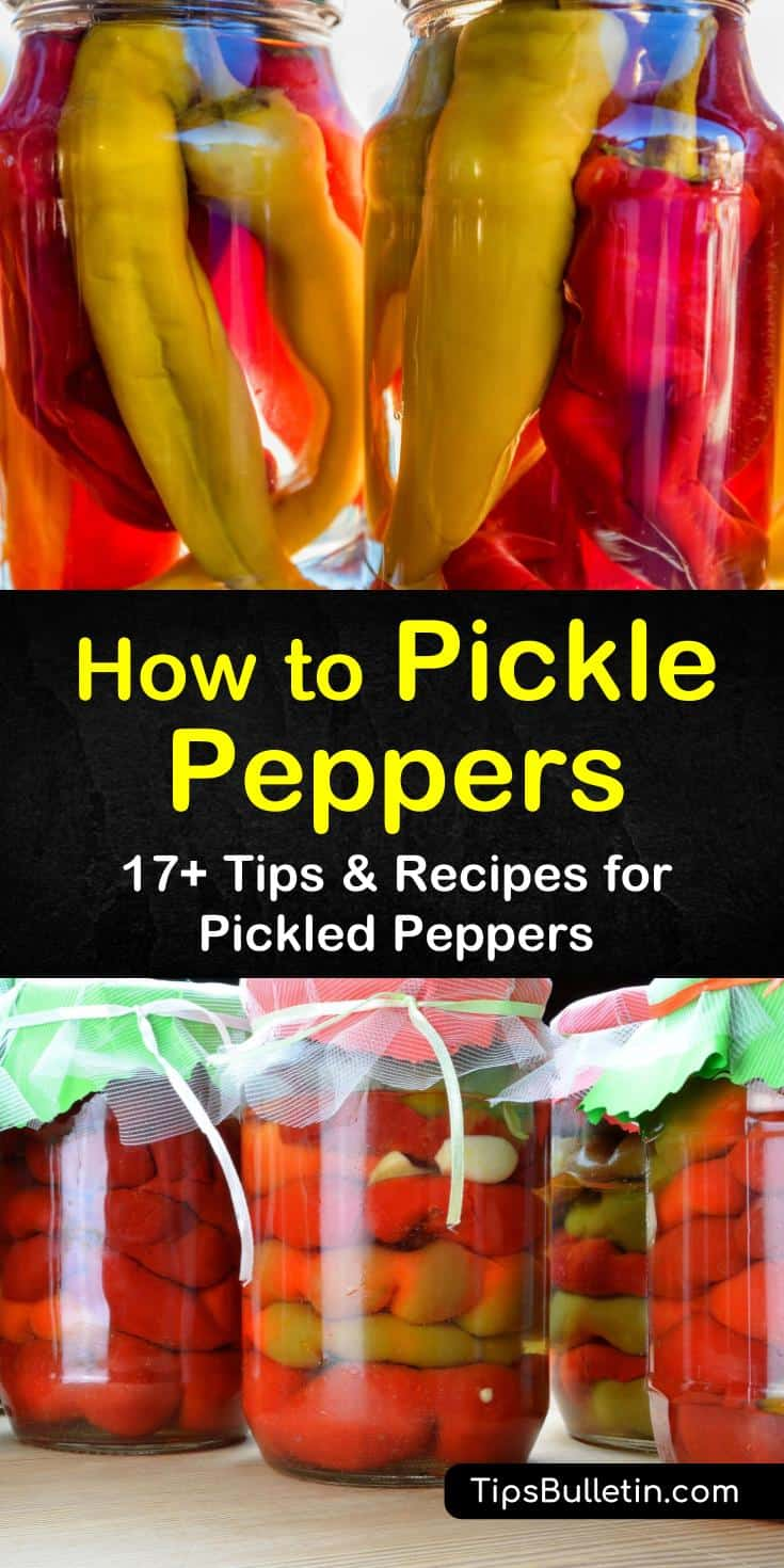 Make pickled peppers in a water bath or refrigerate with one of our quick recipes. Make your hot peppers, bell peppers, and jalapeno pickled peppers with white vinegar and seasonings in a few easy steps. #pickledpeppers #howtopicklepeppers #picklingpeppers