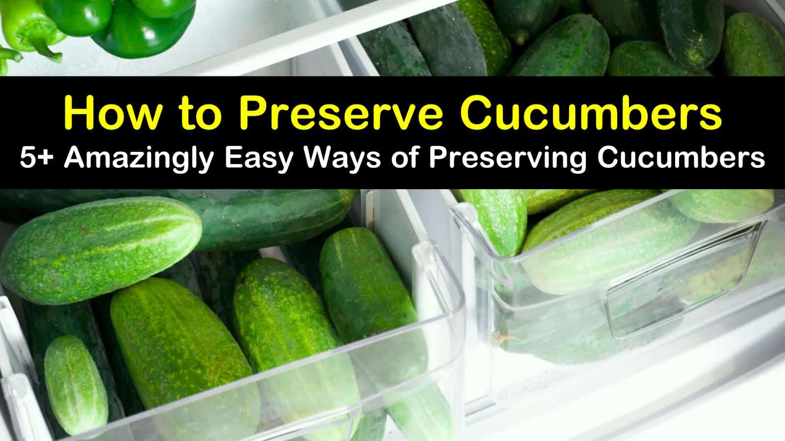 how to preserve cucumbers titleimg1