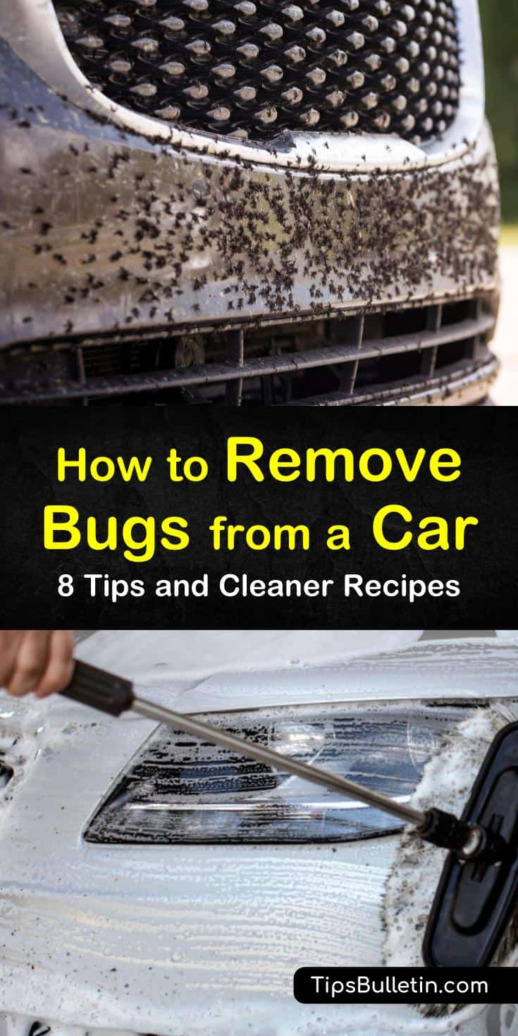 Prevent bug splatters on your car's bumper using a car deflector and car wax. Remove bug guts off your vehicle using white vinegar, baking soda, WD-40, fabric softener, elbow grease, and a little know-how. #cleanbugs #carcleaning #carbugcleaner