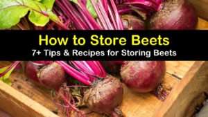 how to store beets titleimg1