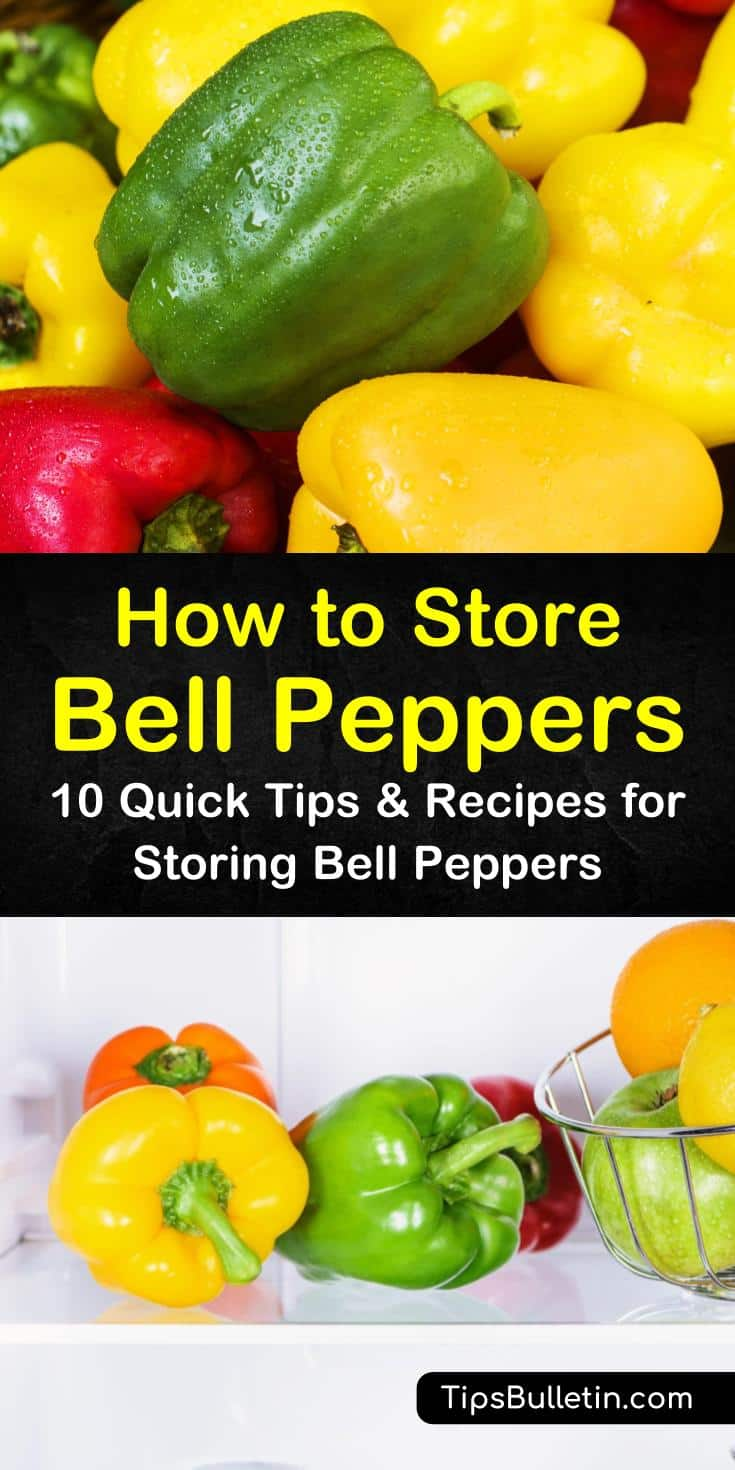Discover the best methods for how to store bell peppers, whether in fridge, freezer, or drying. Try some new canning recipes for fresh and sweet peppers. Whether you plan on short-term or long-term storage, we have a method that works for you. #store #bellpeppers #canning #freeze #fridge #drying