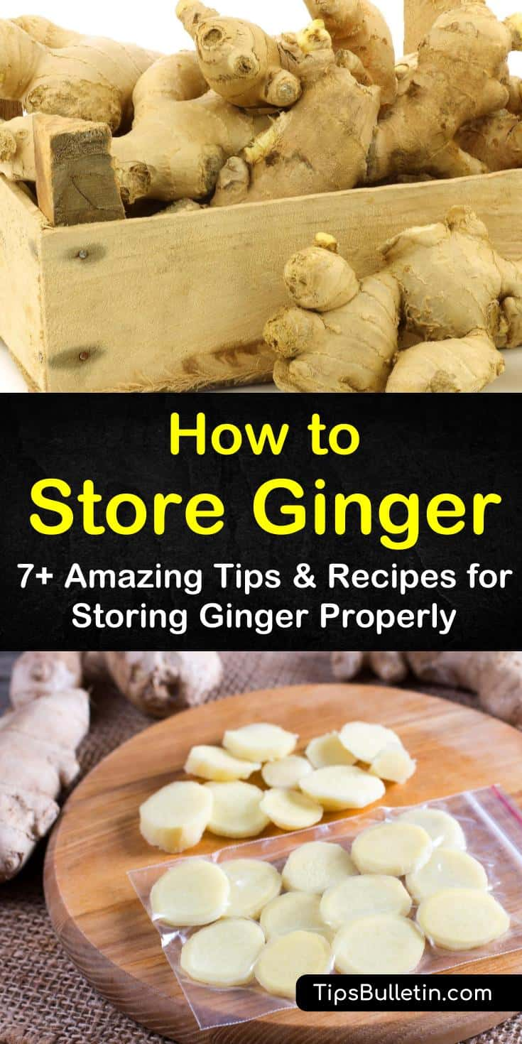 Learn how to store ginger at home in your pantry or refrigerator for short-term use. For longer storage, try freezing your ginger root or storing it in dry sherry. Discover how to grow your very own ginger in containers for year-round storage that doesn't spoil. #howto #store #ginger #grow #freeze