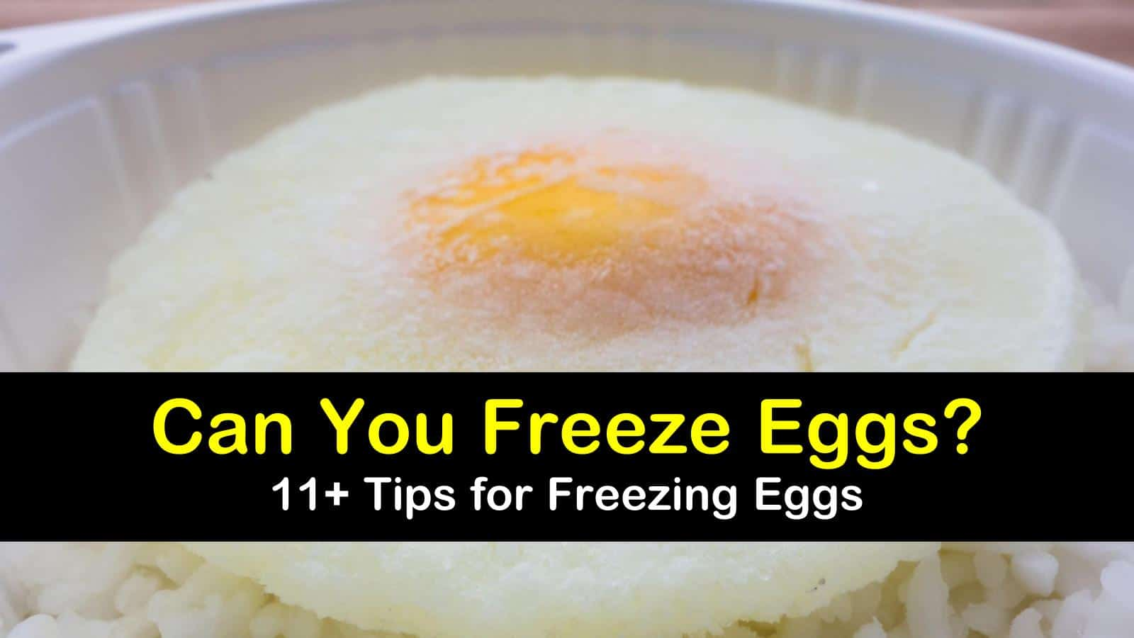 can you freeze eggs titleimg1