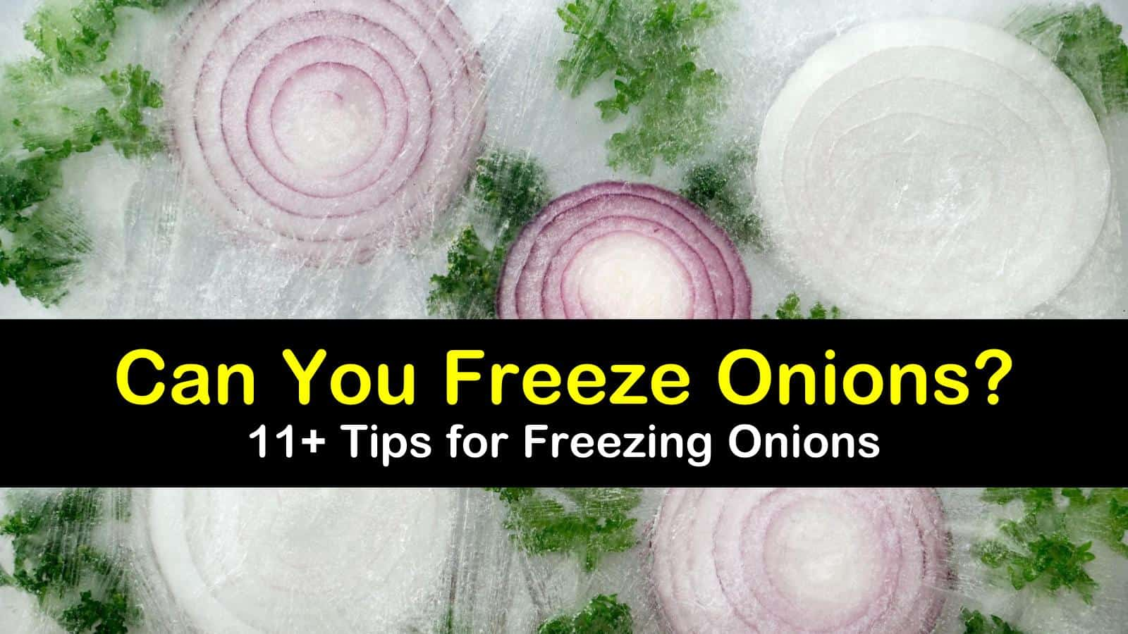 can you freeze onions titleimg1
