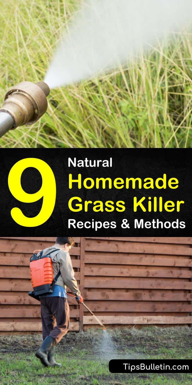 Learn how to make a DIY organic grass killer for clearing an area for flower beds. Make homemade weed and grass killer sprays to clear remove grass. Our recipes use natural ingredients to eliminate grass from any area of the yard. #naturalgrasskiller #homemadegrasskiller #killgrass