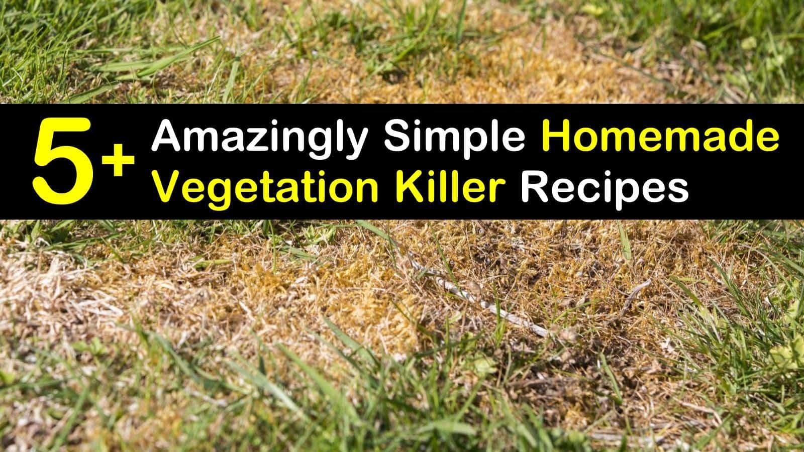 homemade vegetation killer titleimg1