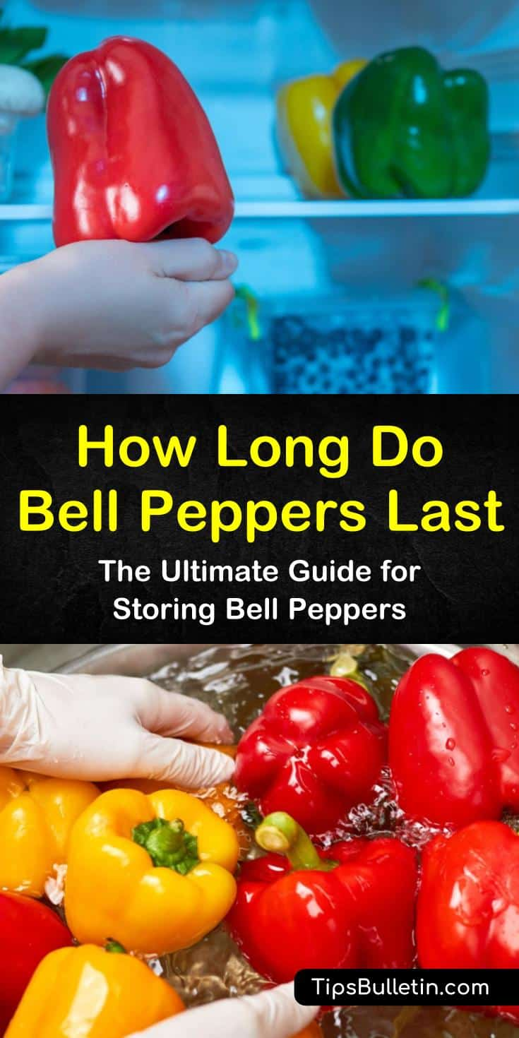 Discover the shell life of bell peppers, whether they are refrigerated or frozen. We'll show you how to store red, yellow, and green bell peppers to maintain their flavor, and how to use up old peppers so they don't go to waste. #bellpepperstorage #bellpeppershelflife #storingbellpeppers