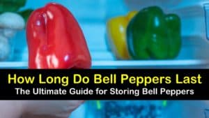how long do bell peppers last titleimg1