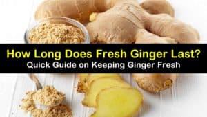 how long does fresh ginger last titleimg1