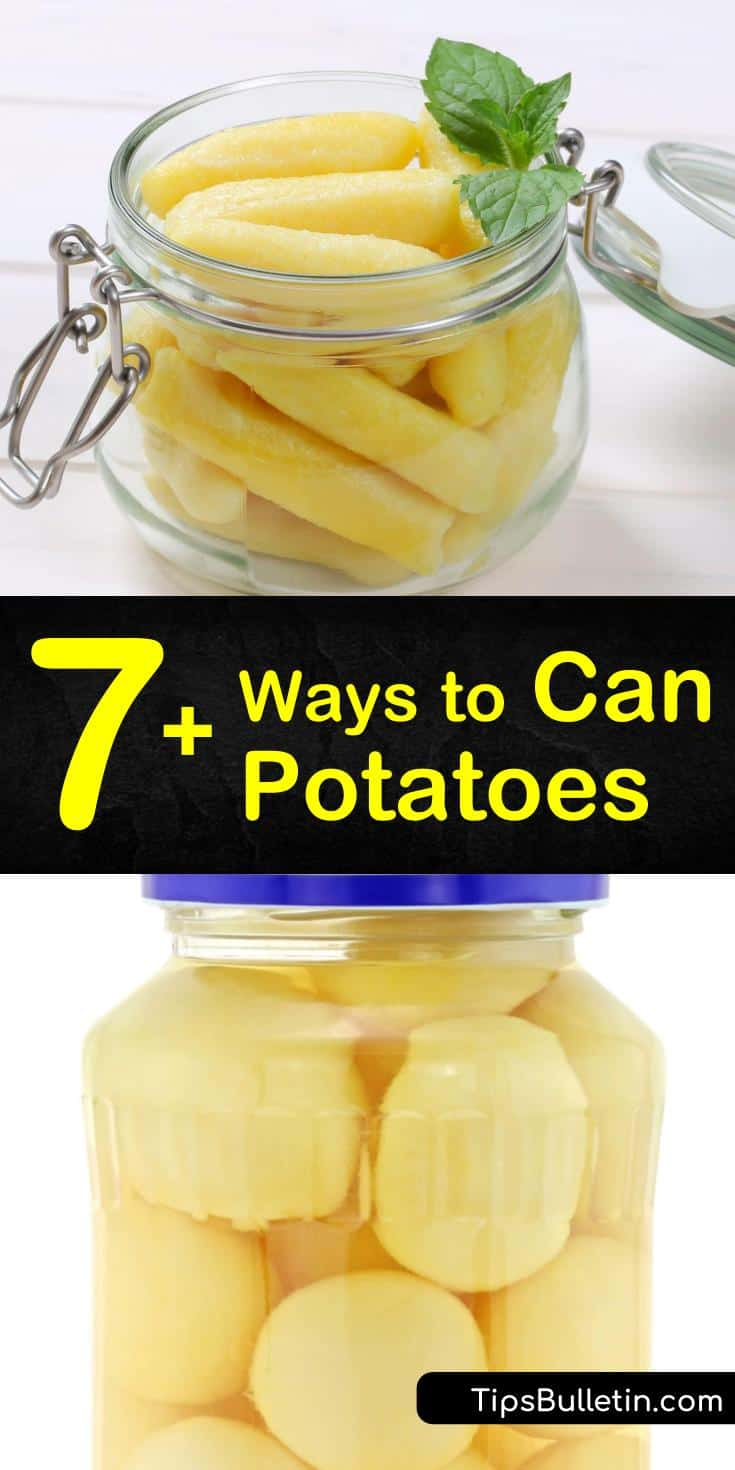 If you want to know how to can potatoes, then these fantastic recipes will get you started. You can't can potatoes without a pressure cooker, so follow these steps to see how it's done. Find out how to can sweet potatoes in a delicious, sugary syrup, too! #howtocanpotatoes #canningpotatoes