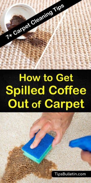 7+ Ways to Get Spilled Coffee Out of Carpet