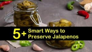 how to preserve jalapenos titleimg1