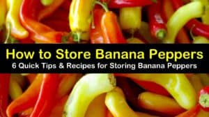 how to store banana peppers titleimg1