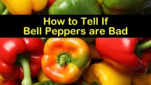how to tell if bell peppers are bad titleimg1