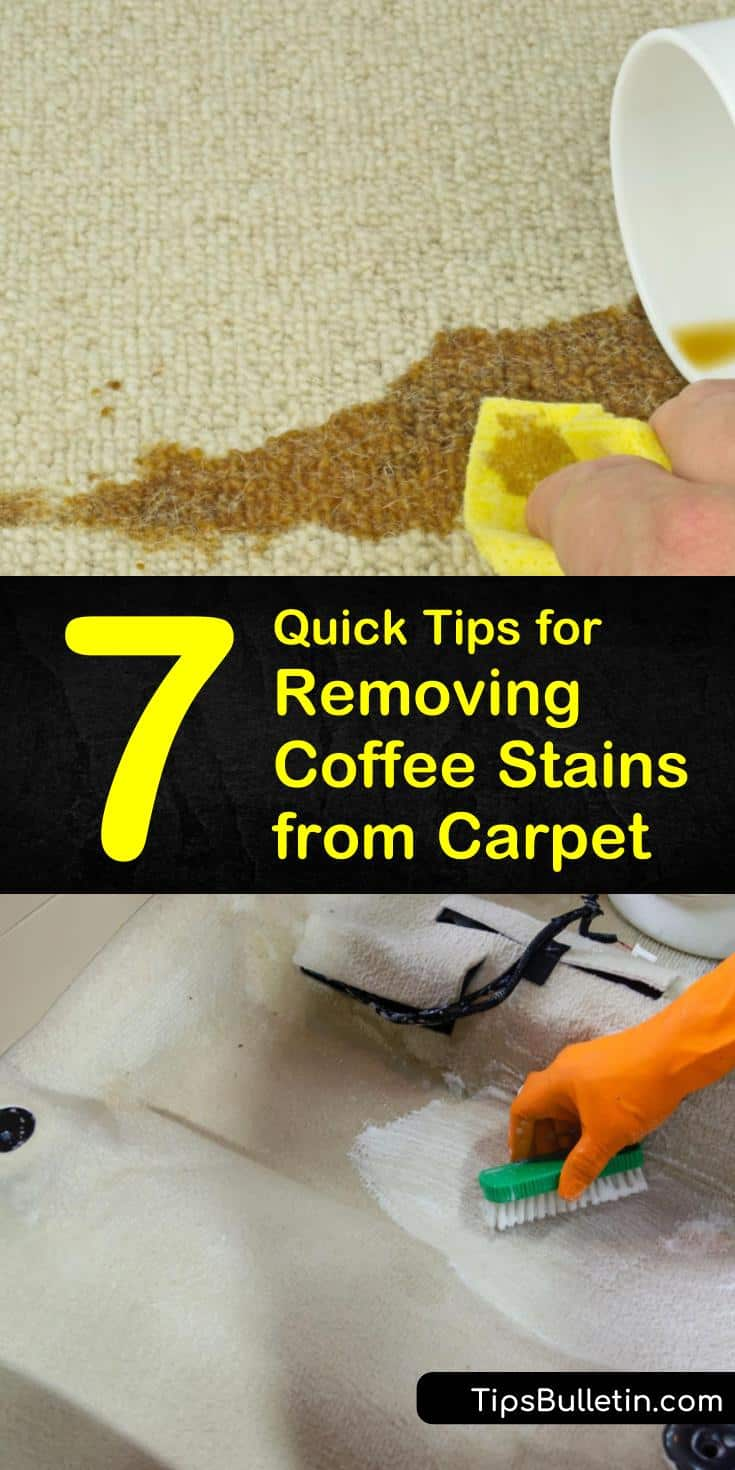 Learn the best strategies for removing coffee stains from car carpet whether freshly made or old. Use ingredients like lemon juice to remove dirty stains caused by tannin in coffee. Try any of these easy solutions for ridding your car of coffee stains. #removing #coffee #stains #car #carpet
