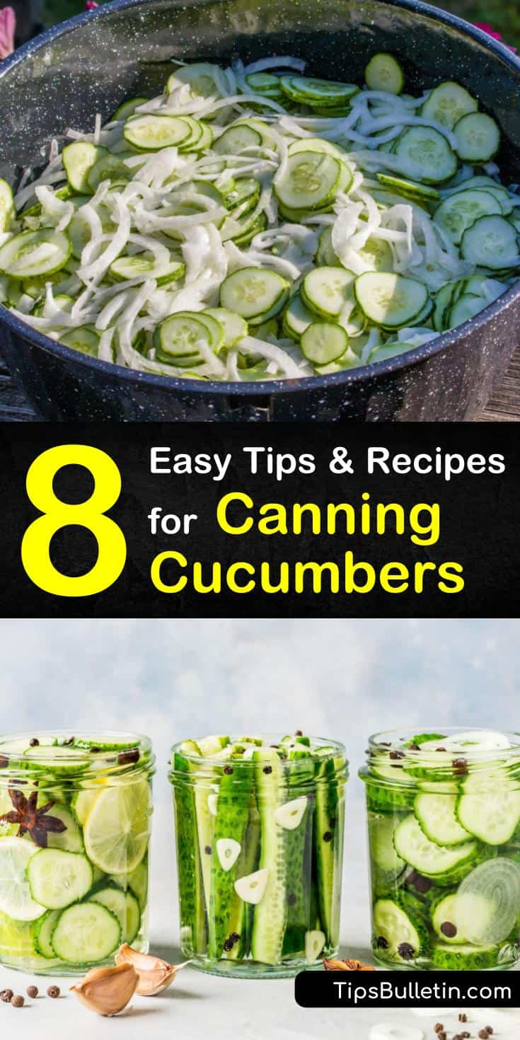 Learn how to make pickles with these easy cucumber canning recipes! Whether you like sweet or spicy pickles, there's a recipe for you. All you need is a few simple ingredients like white vinegar, garlic, and dill, and you'll have pickles in no time. #canning #cucumber #pickles
