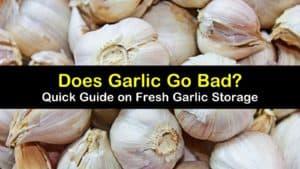 does garlic go bad titleimg1