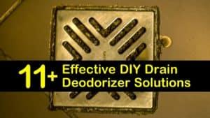 homemade drain deodorizer titleimg1