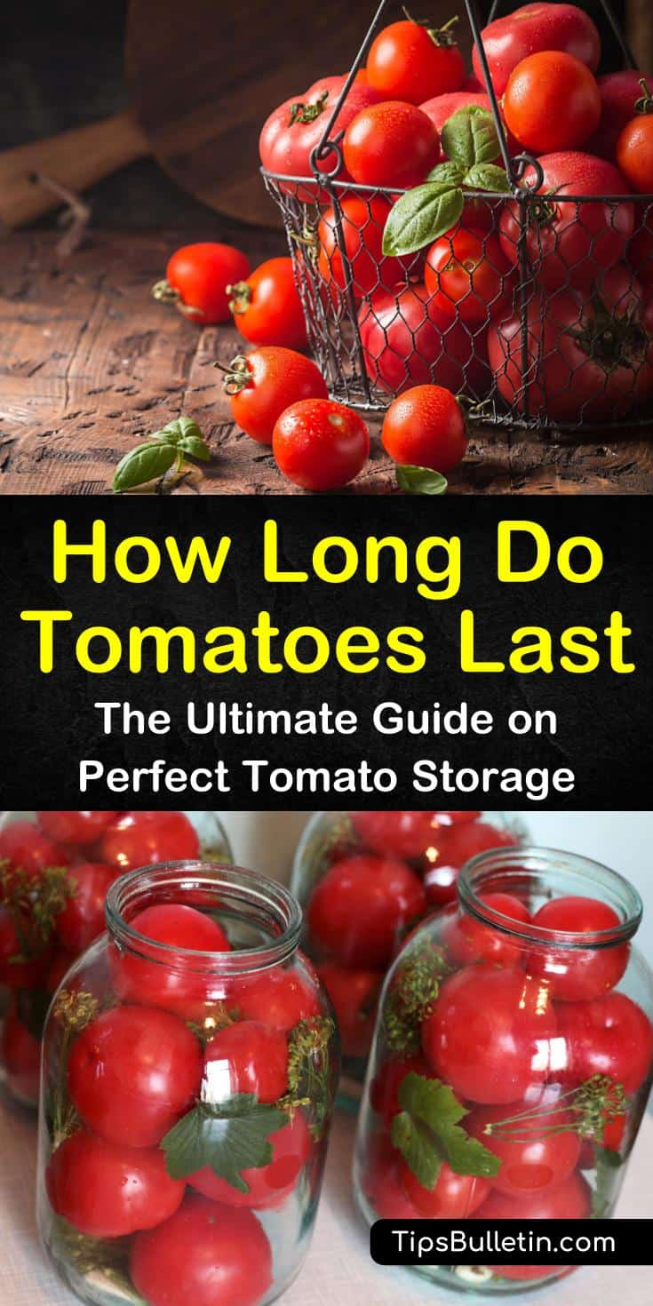 Learn how to store tomatoes from the farmer's market on the countertop and how to refrigerate, freeze, and can tomatoes for long term storage. For unripe tomatoes, place them in a paper bag and store them in a dark place. #tomatoes #last #shelflife
