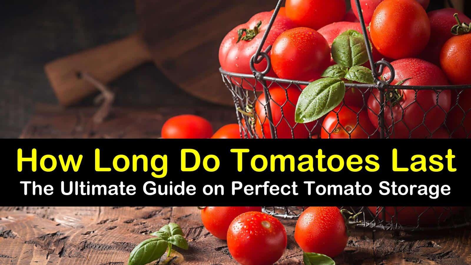 how long do tomatoes last titleimg1