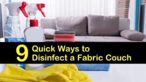 how to disinfect a couch titleimg1