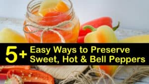 how to preserve peppers titleimg1