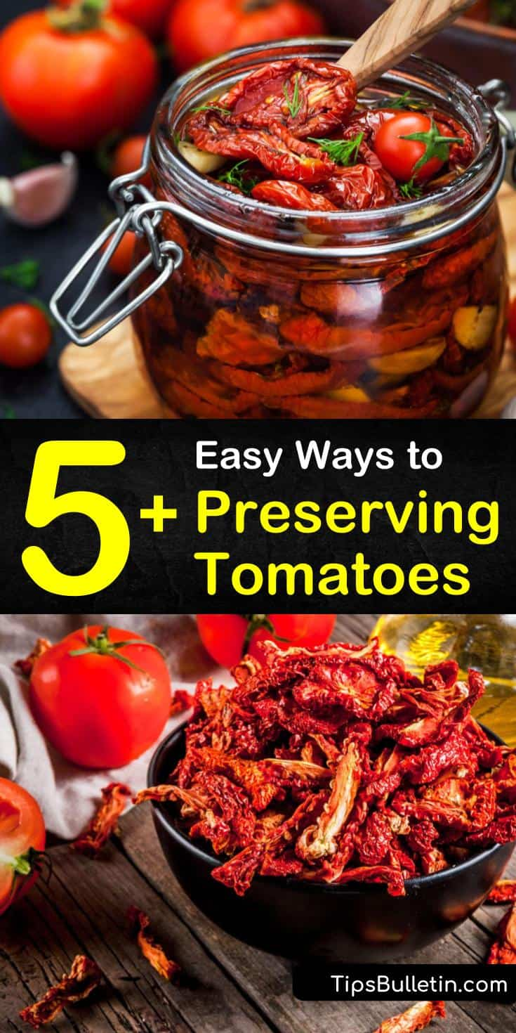 From freezing tomatoes to using a water bath canner, we show you various preservation methods. Use your dehydrator to turn cherry tomatoes into a tangy treat or turn whole tomatoes into tomato juice. #preservetomatoes #foodpreservation #tomatostorage