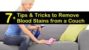 how to remove blood stains from a couch titleimg1