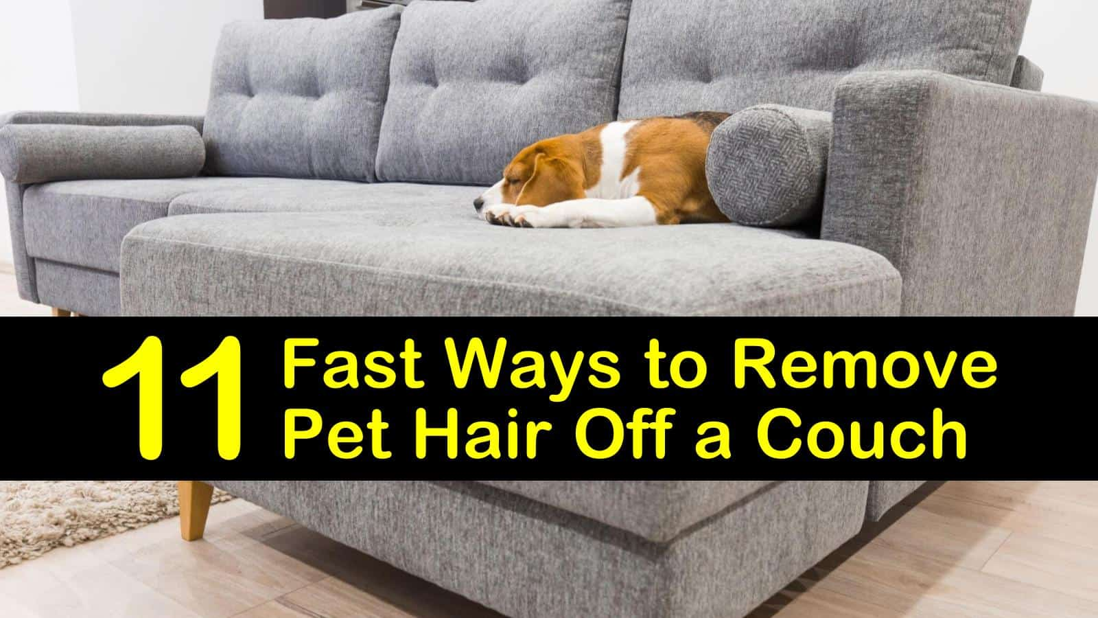 11 Fast Ways To Remove Pet Hair Off A Couch