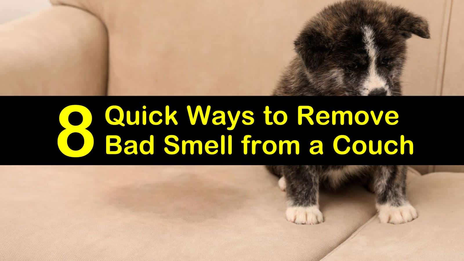 how to remove odor from a couch titleimg1