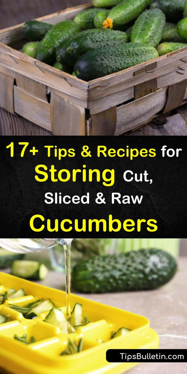 Zucchini, cukes, and other veggies have varying expiration dates depending on how they are stored. Learn how to keep cucumbers crispy at room temperature or refrigerated in the crisper drawer wrapped in a paper towel and plastic wrap. #storingcucumbers #store #cucumber