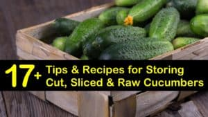 how to store cucumbers titleimg1