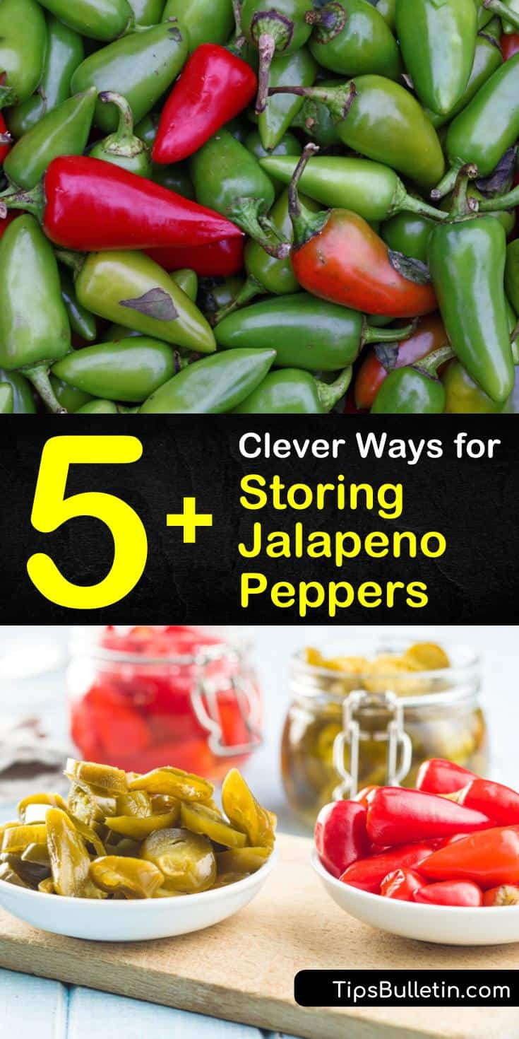 Learn the best ways to store jalapenos so you can enjoy hot peppers year round! With these tips, your jalapeno peppers from your jalapeno plant will never go to waste. #storejalapenos #jalapenos #storingjalapenos