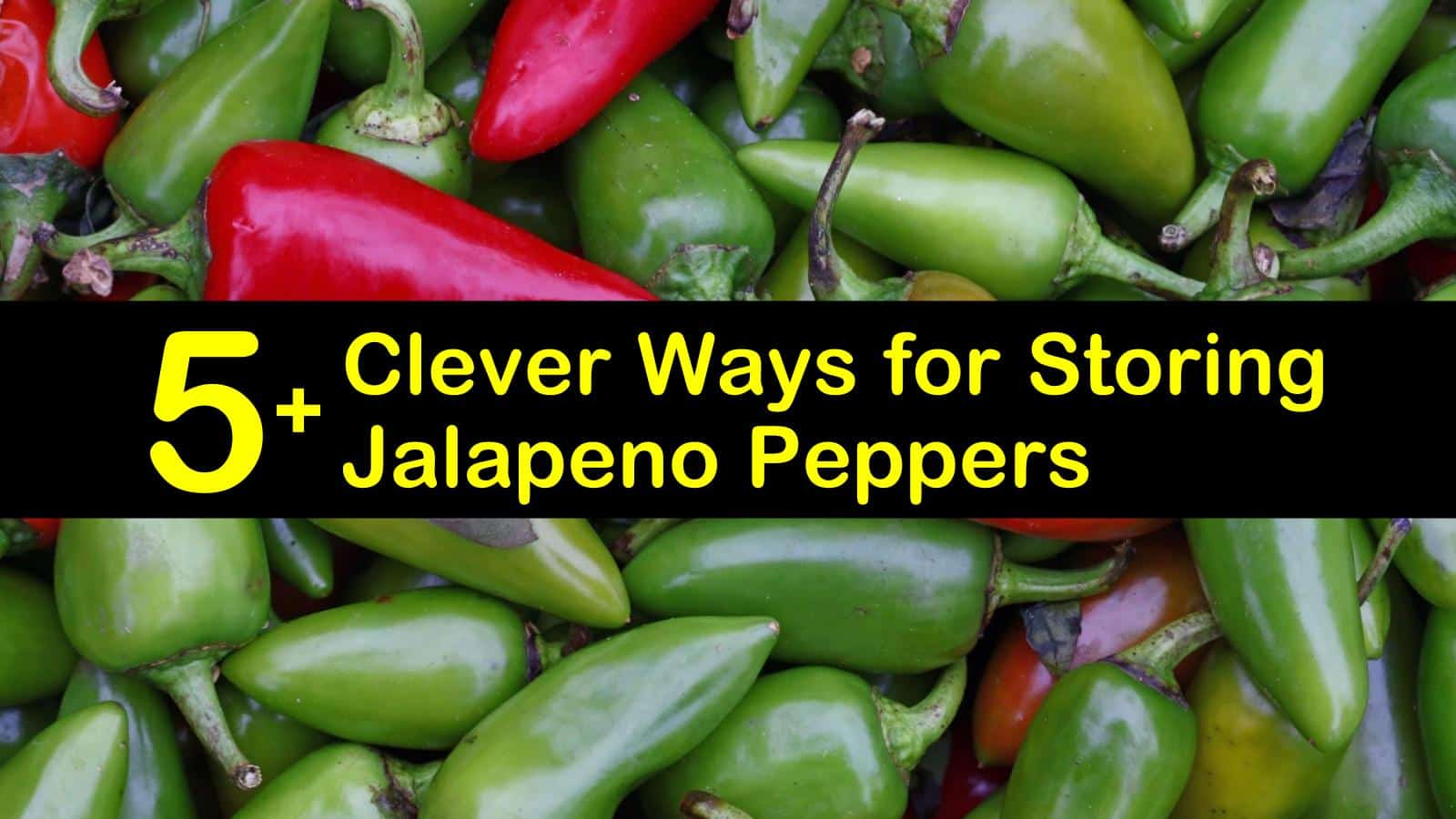 how to store jalapenos titleimg1