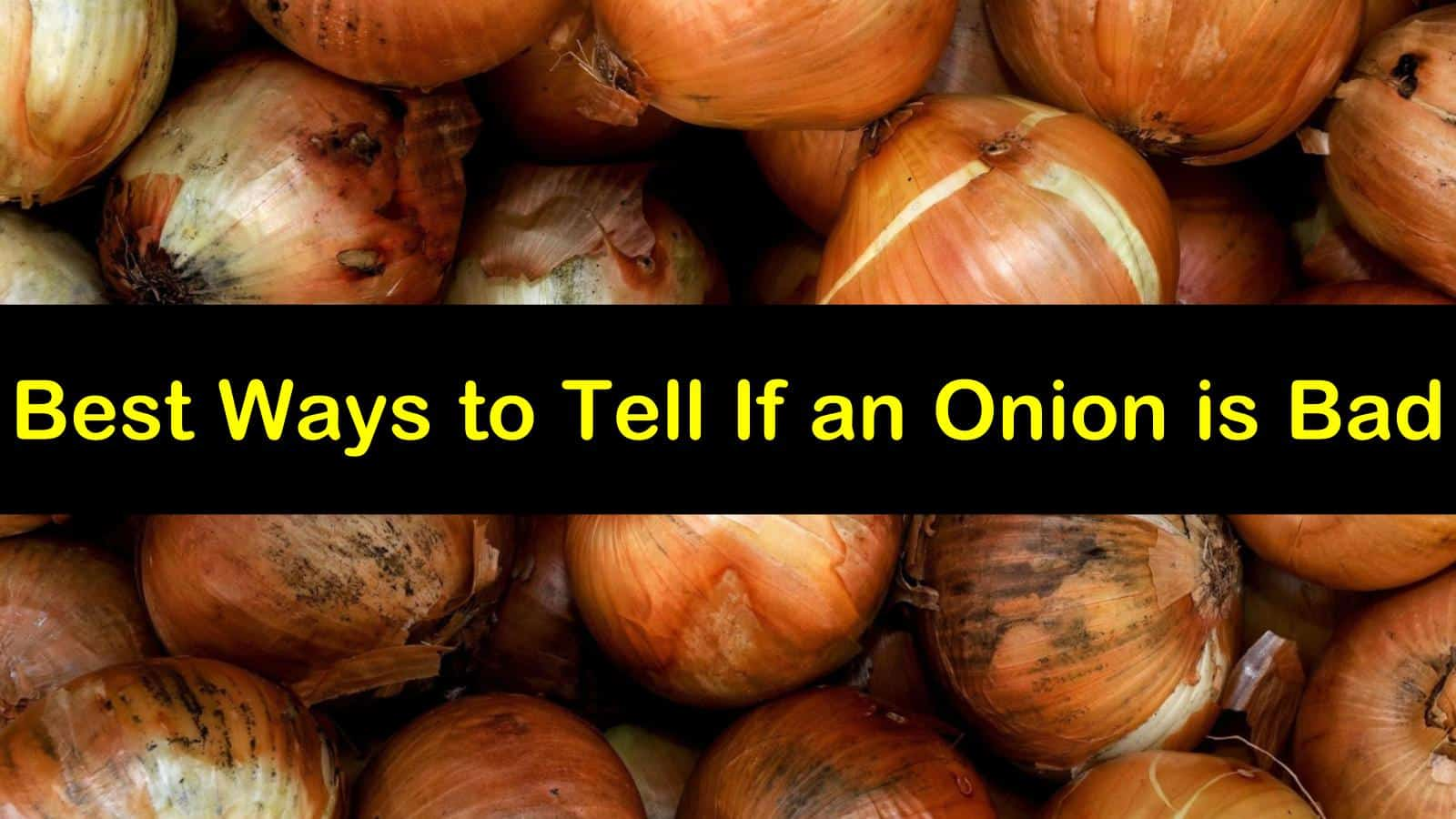 how to tell if an onion is bad titleimg1