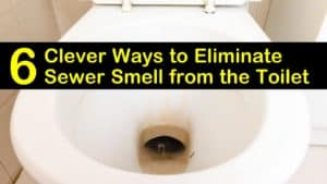 sewer smell from the toilet titleimg1