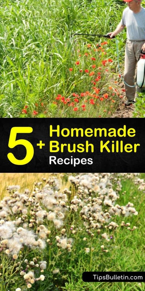 Discover your new favorite homemade brush killer with simple-to-follow recipes and tips. Create your own DIY herbicide using vinegar, Borax, or gin. If homemade recipes are not your style, then learn the best store-bought chemicals to use and how to use them. #homemade #brush #killer