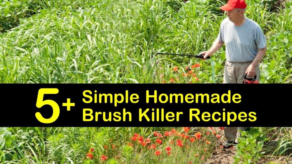 homemade brush killer titleimg1