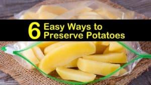 how to preserve potatoes titleimg1