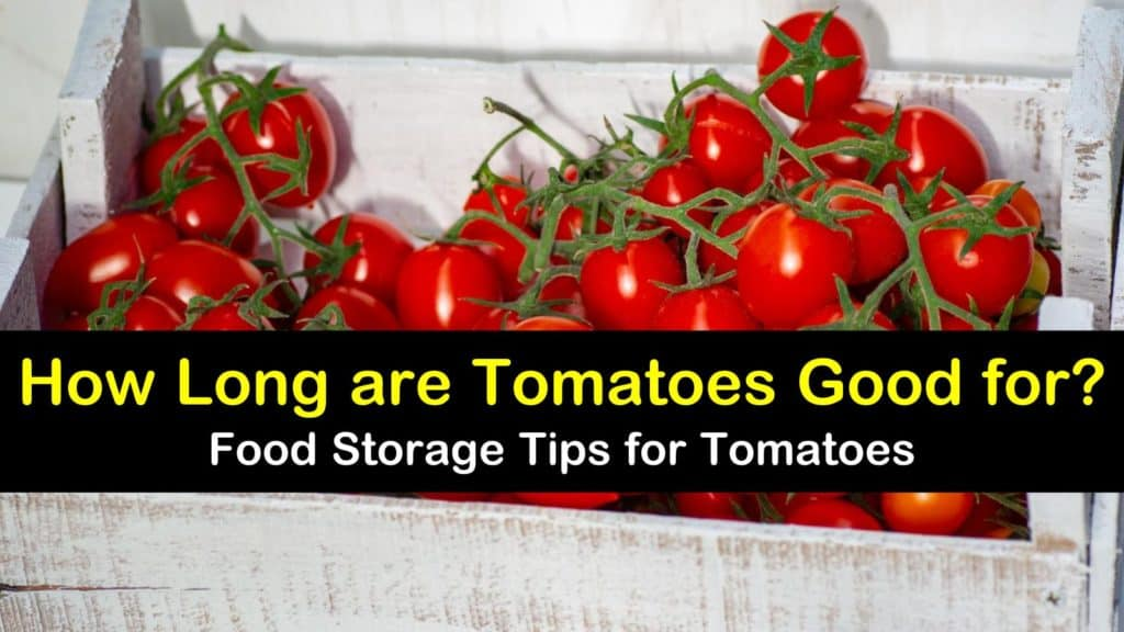 How Long are Tomatoes Good for? titleimg1
