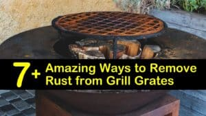 How to Clean Rusty Grill Grates titleimg1