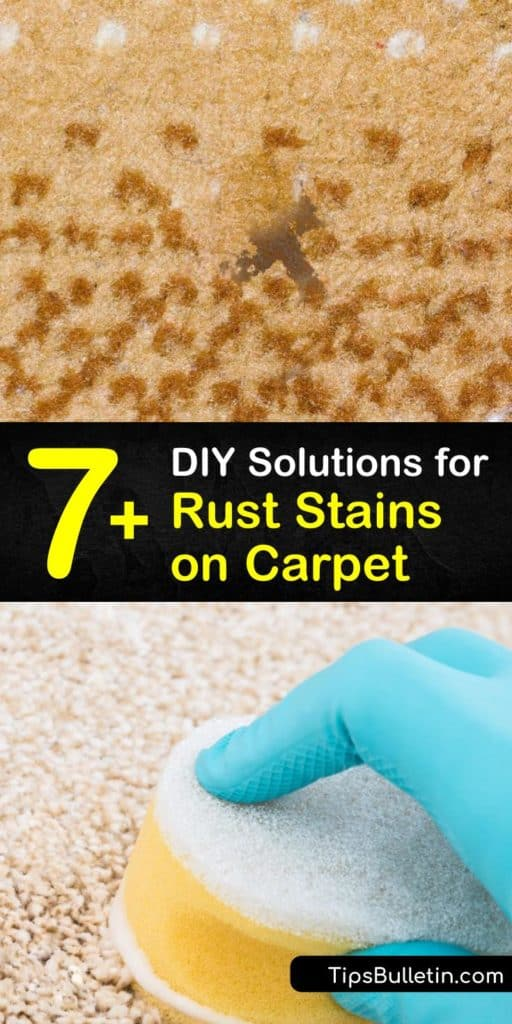 7+ Simple DIY Solutions for Rust Stains on Carpet